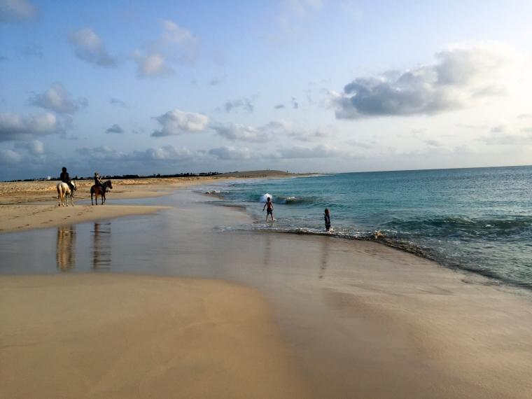 Två barn leker i vattnet på en strand där det går två hästar.