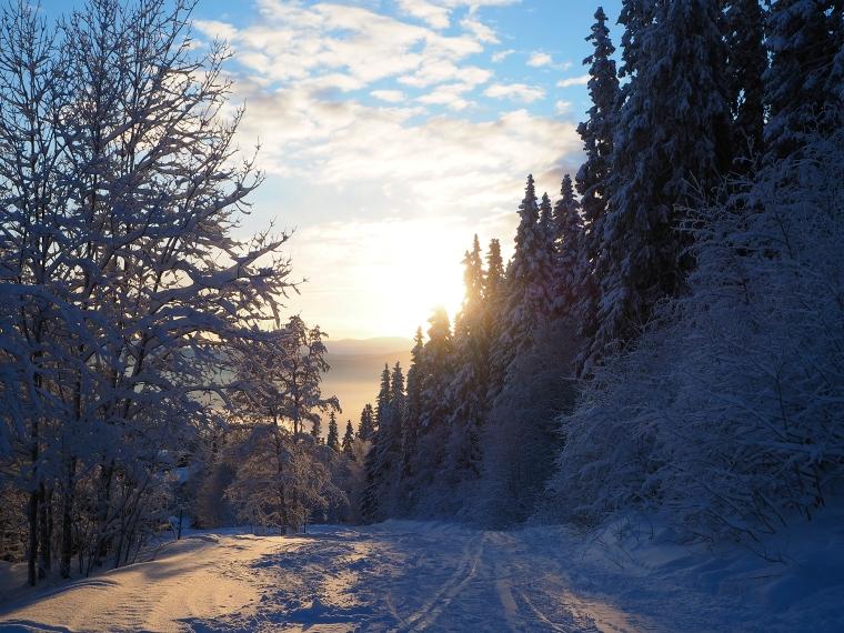 Sol och snö.