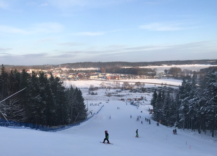 Bild tagen uppe ifrån en slalombacke med utsikt över ängar och sjö.