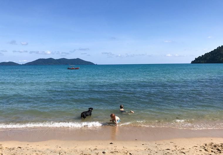 Två barn och en hund badar i havet.