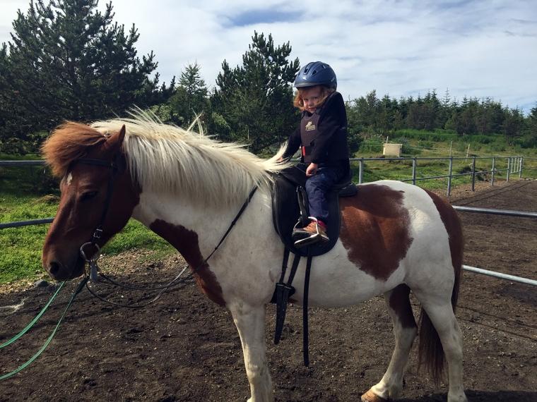Ett litet barn på en islandshäst.