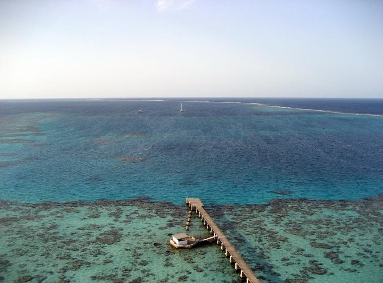 Tagen högt uppifrån ner i havet där man ser korallreven under ytan.
