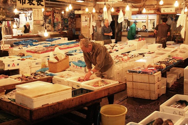 Mängder av frigolitlådor med fisk.