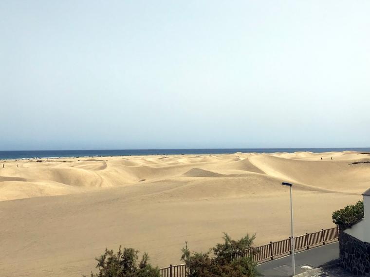 Sanddyner med hav i bakgrunden.