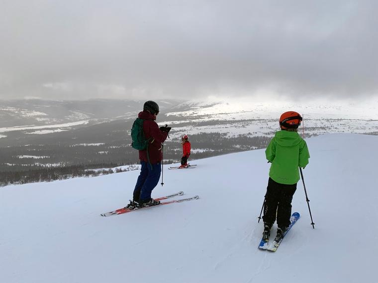 En vuxen och två barn i en skidbacke med disigt väder.
