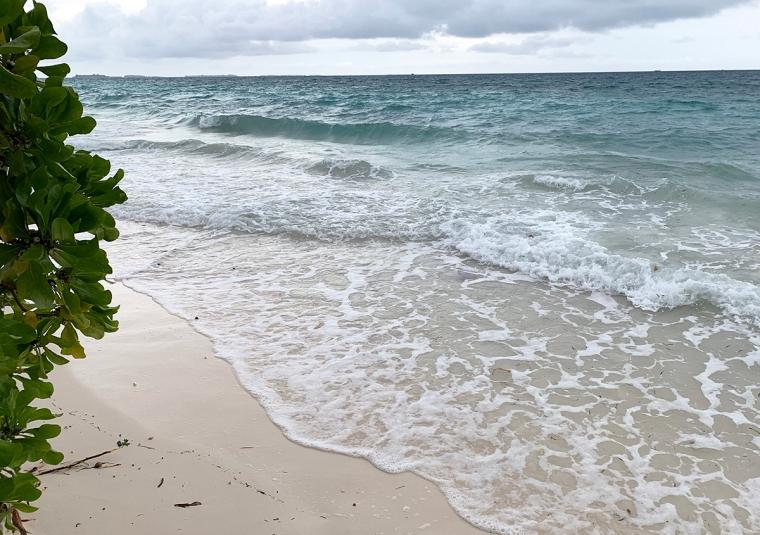 En strand med vågor och grå himmel.