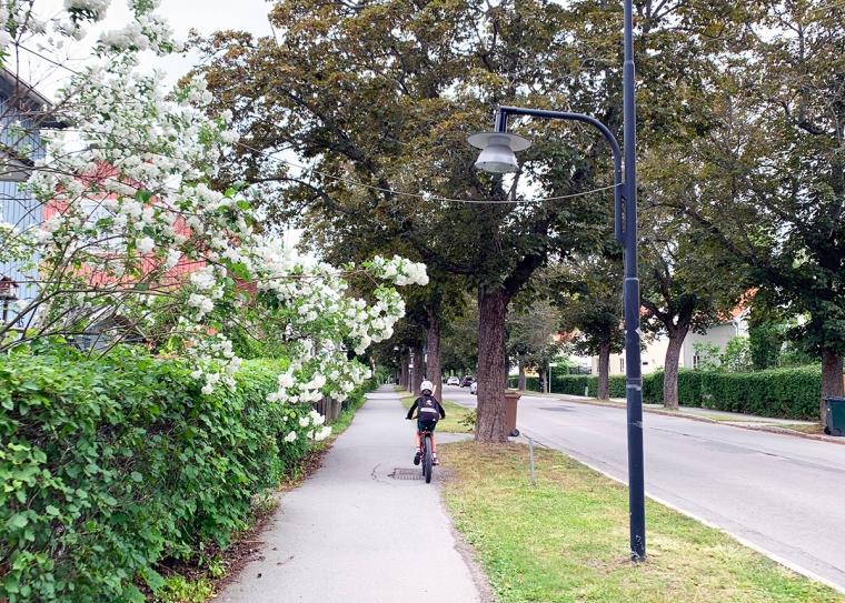 Ett barn på cykel med ryggsäck.