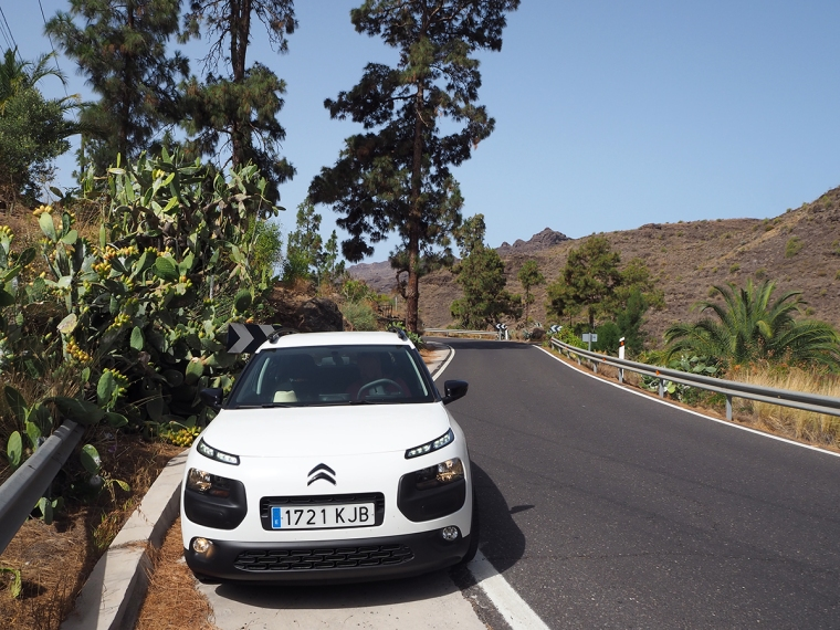 En vit bil av modell Cactus står parkerad bredvid en hög kaktus.