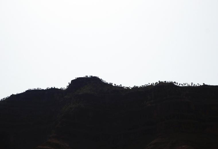 En bergskam i motsljus med siluetter av träd.