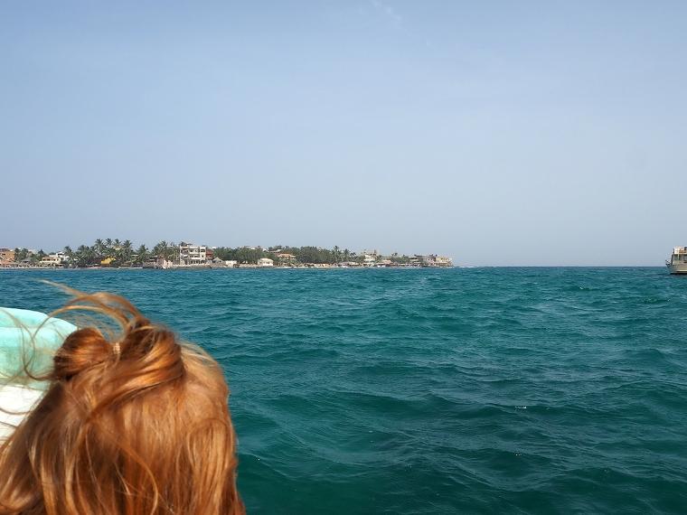 Vy från havet mot en ö med hus och grönska.