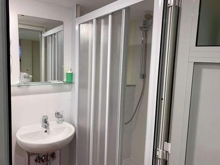 Ett handfat och en dusch.