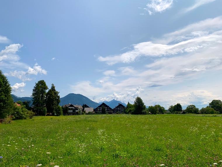 Grön äng med berg i bakgrunden.