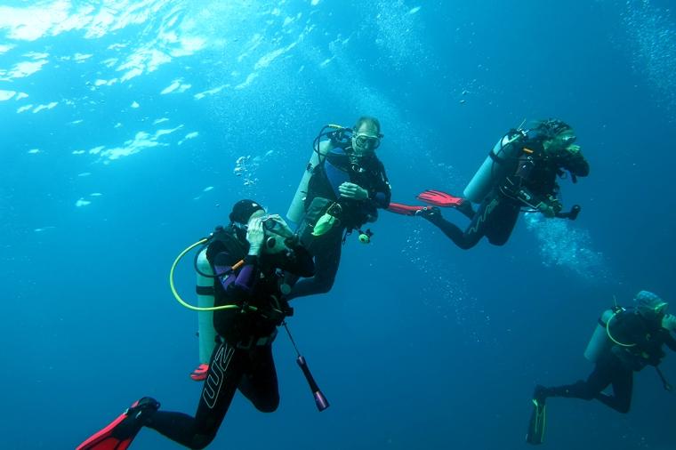 4 dykare i vattnet.