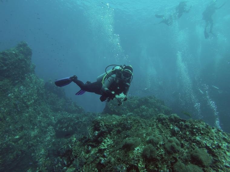 En dykare under ytan.