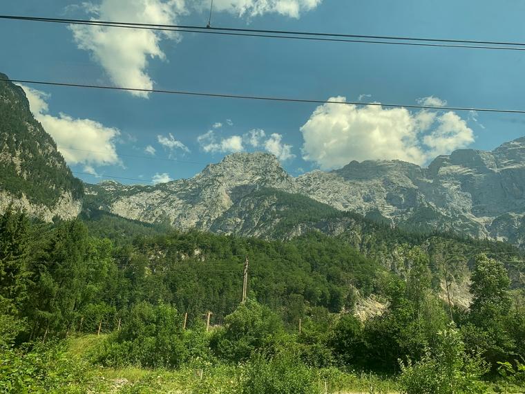 Berg och gröna skog.