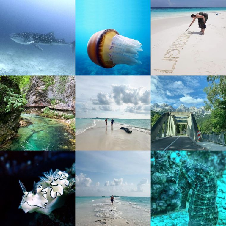 Collage med 9 olika bilder.