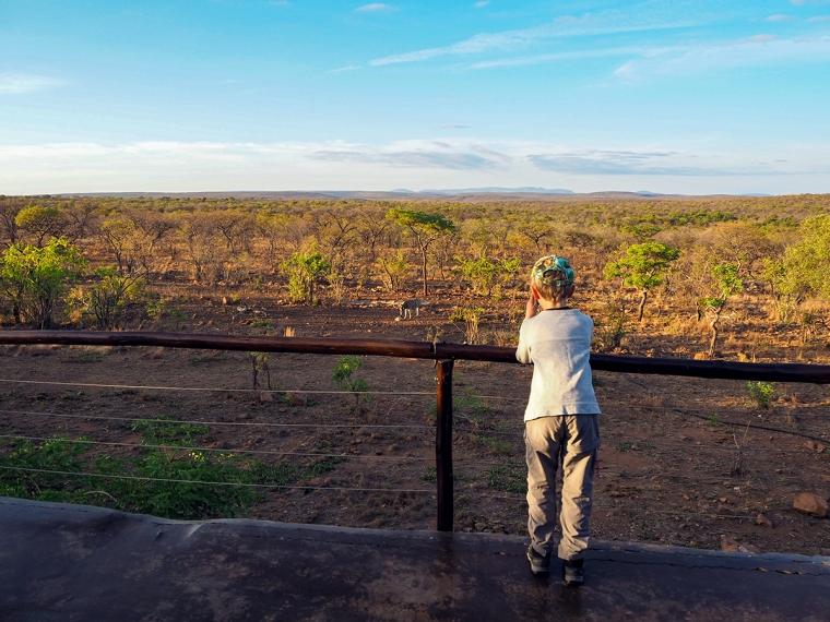 Ett barn står med en kikare och tittar på en zebra vid ett vattenhål.