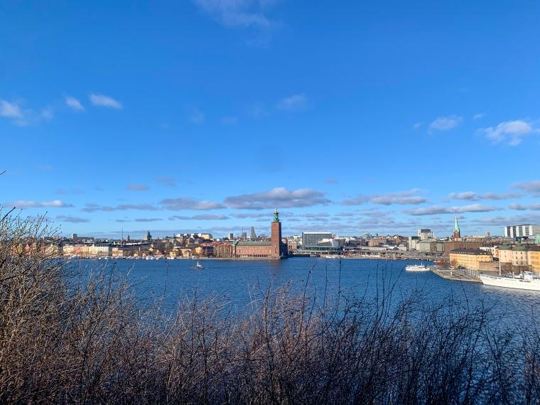 Utsikt över Stockholm med stadshuset och Mälaren.