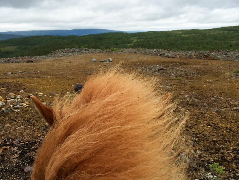 Utsikten över berg från en hästrygg.