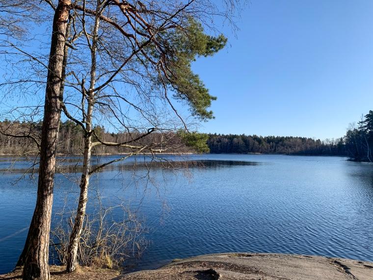 Utsikt över en liten sjö.