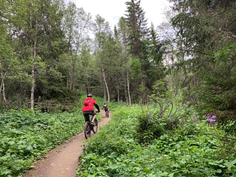 En man och ett barn på cykel på en skogsstig.