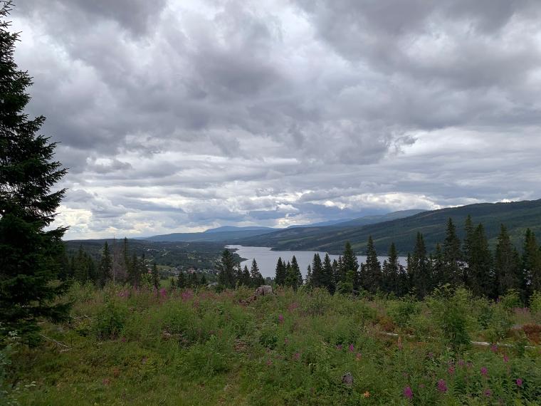 Utsikt över berg, skog och sjö.
