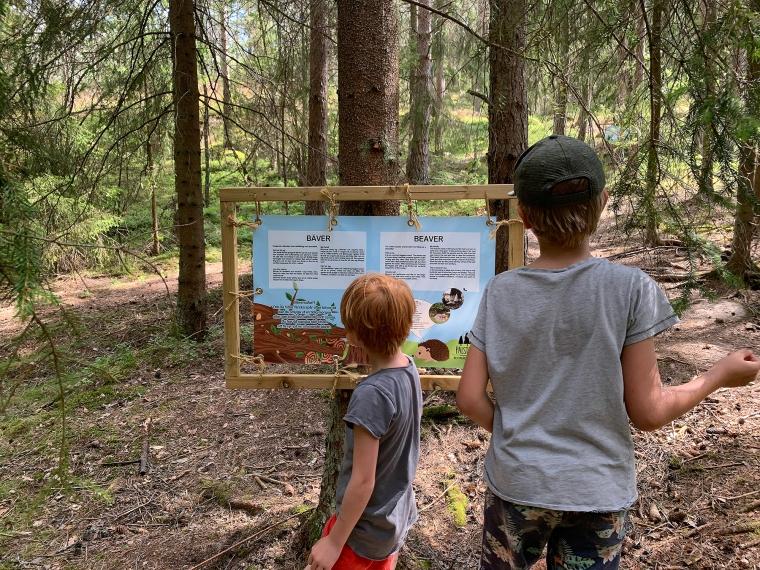 Två barn läser på en skylt i skogen.
