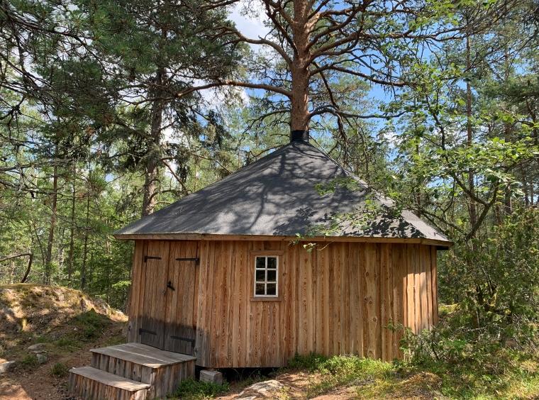 Ett hus byggt med ett träd i mitten som ticker upp ur taket.