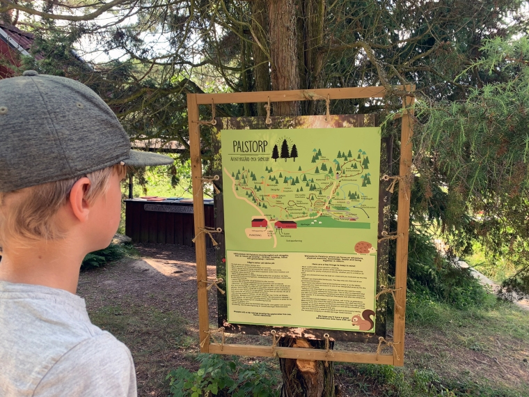 Ett barn tittar på en karta med aktiviteter.