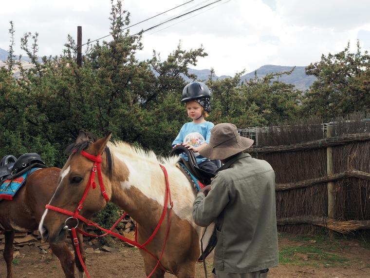 Ett barn sitter på en vit och brun häst.