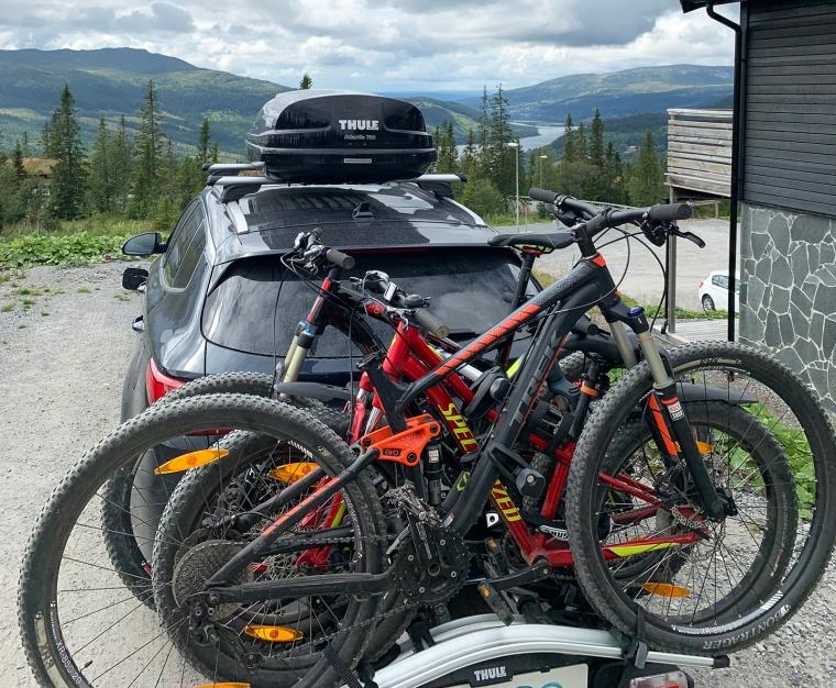 Fyra cyklar på en cykelhpllare på en bil med takbox.